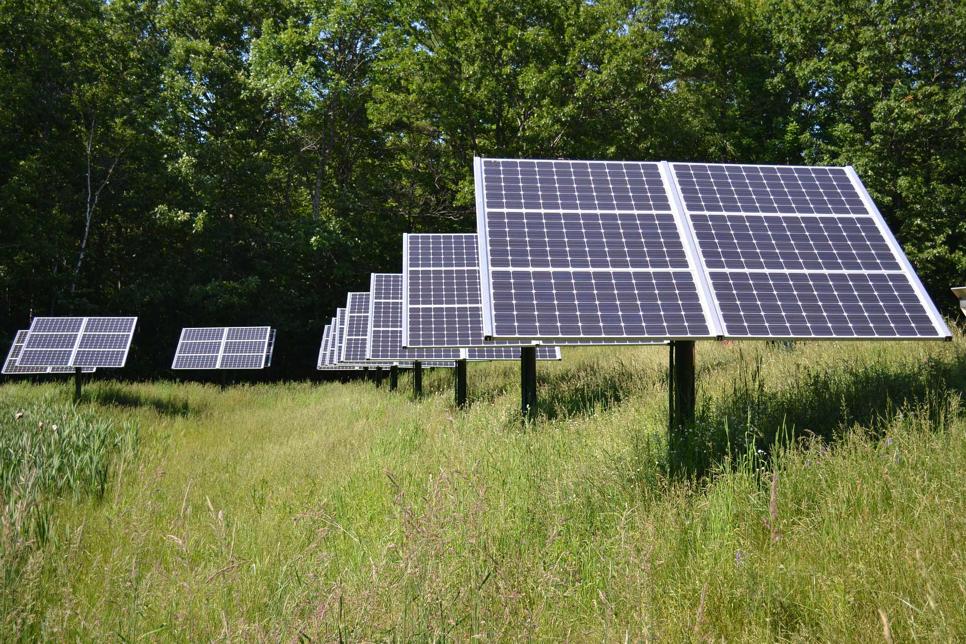 Local Public Authority-Owned Green Energy Supplier Loses Out to Big 6 Supplier