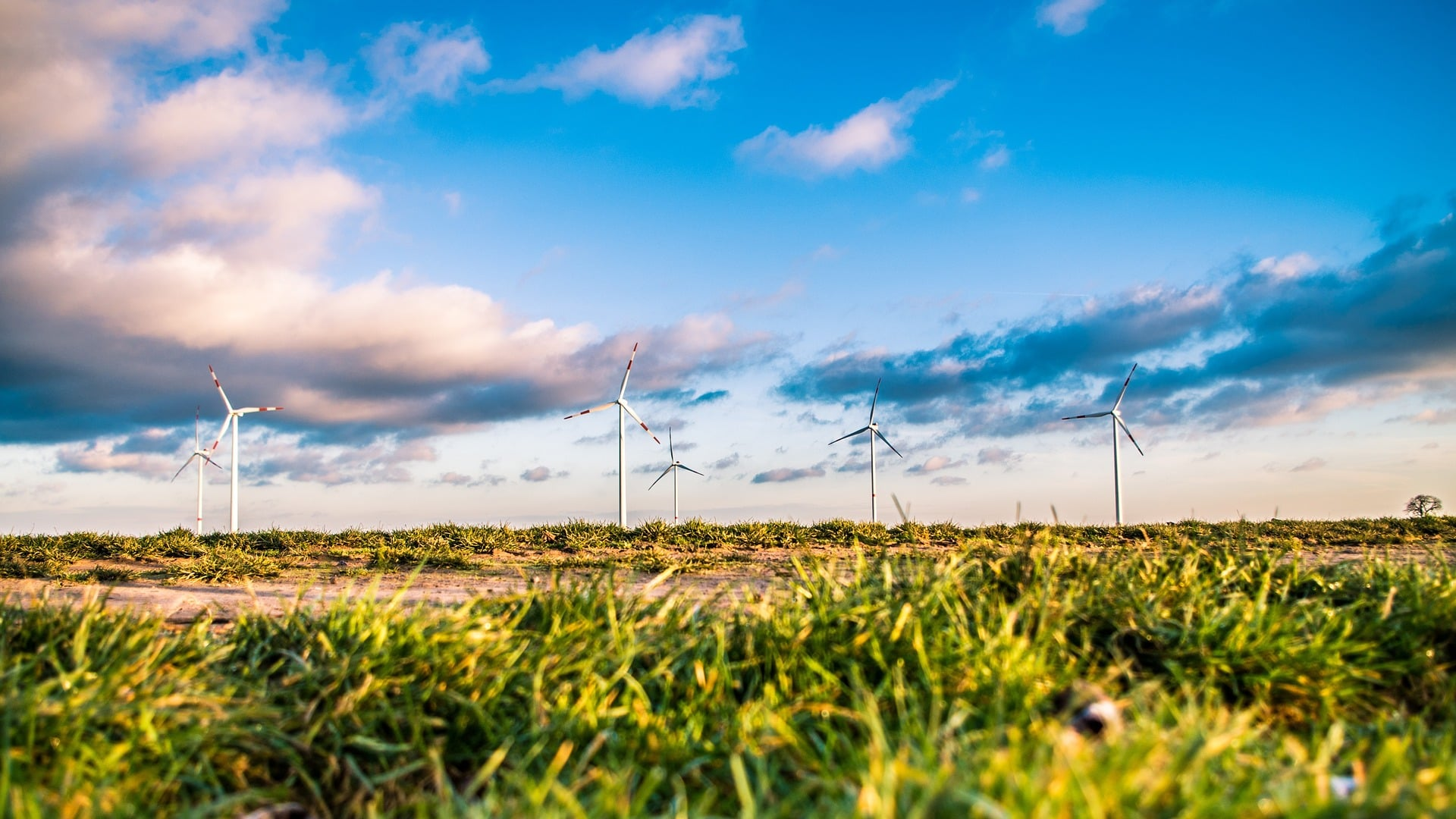 UK CCS New Agreement To Increase Use of Public Sector Renewable Energy