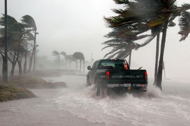 Procurement in Emergency Situations: Logistics Lessons from the Hurricane Season