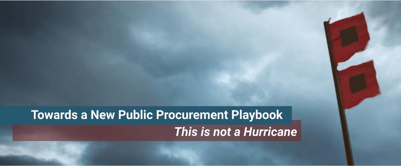 Towards a New Public Procurement Playbook