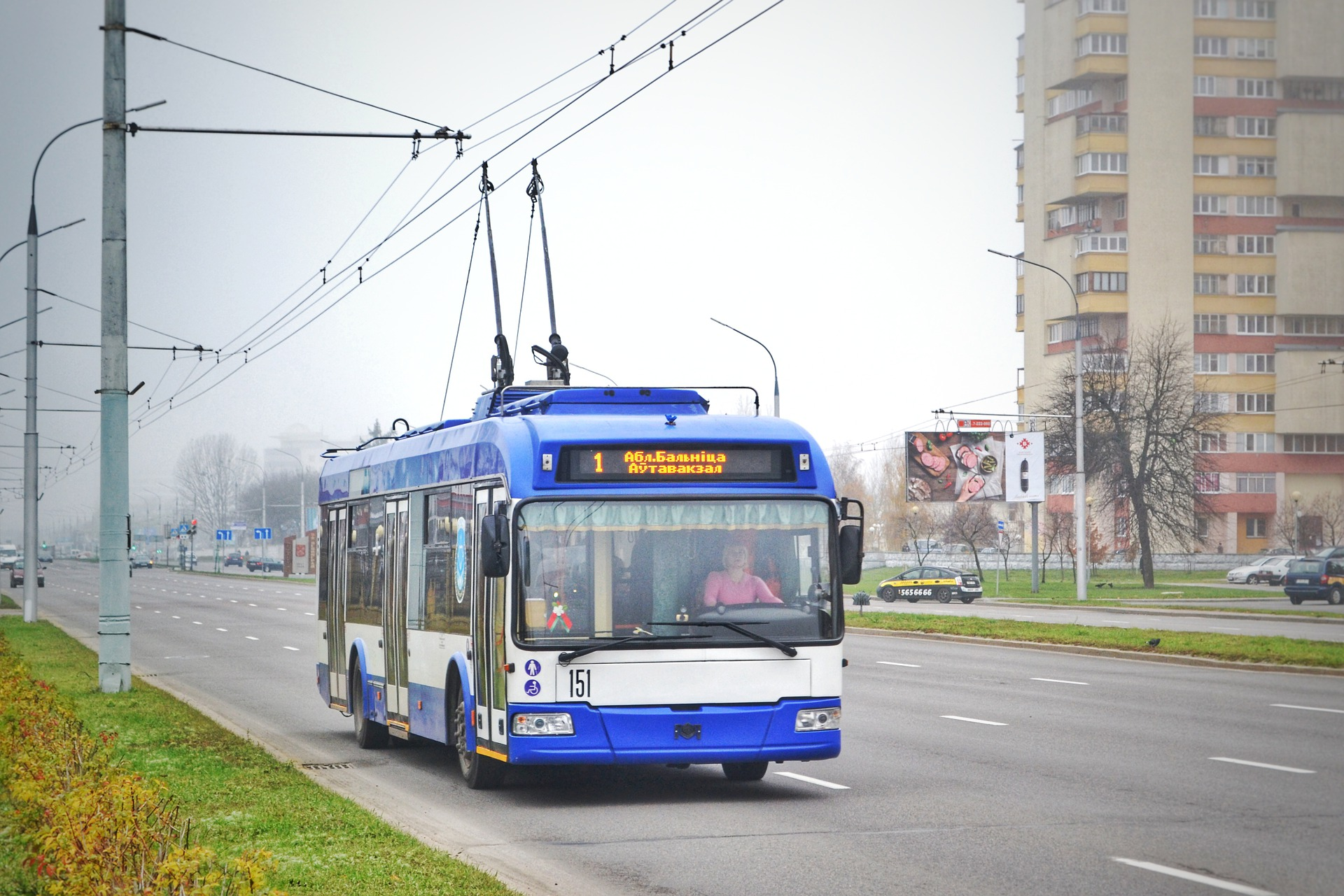 Denmark, Luxembourg, Netherlands lead deployments of zero-emission buses in Europe