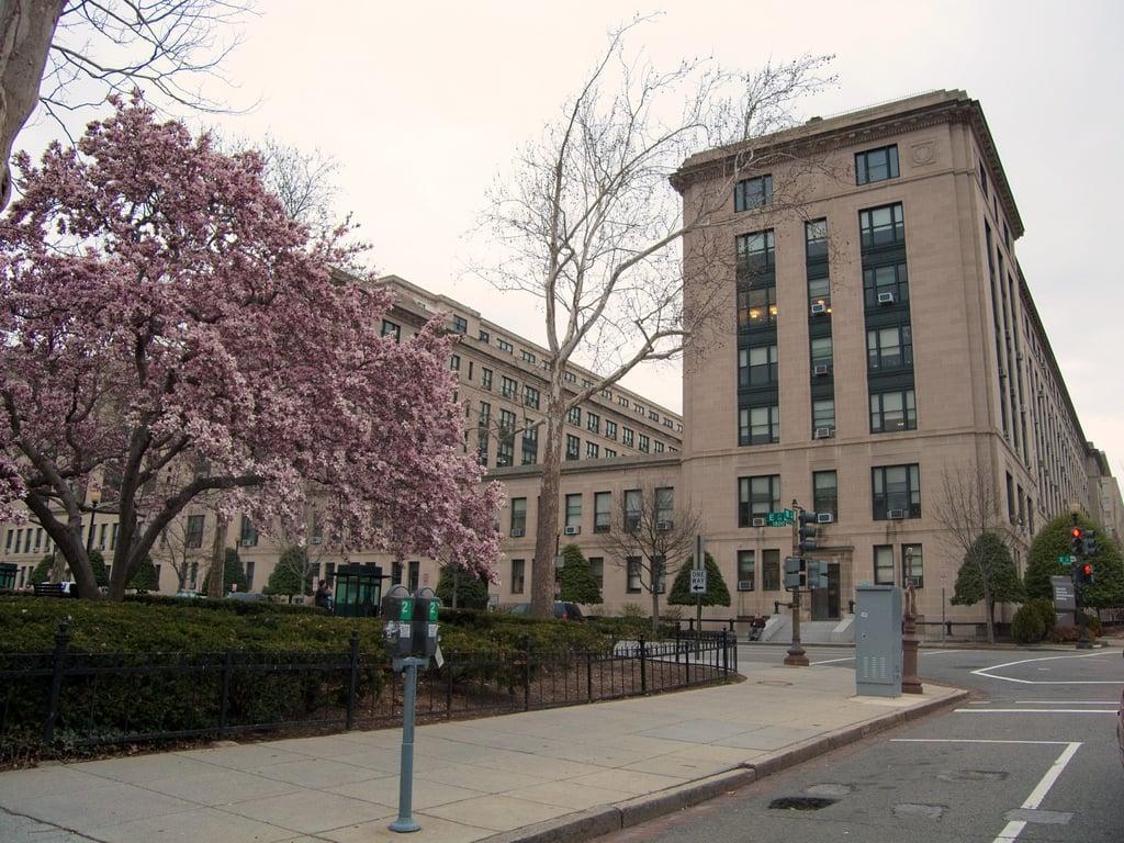 Public Procurement News Round-up | 2/21/2017