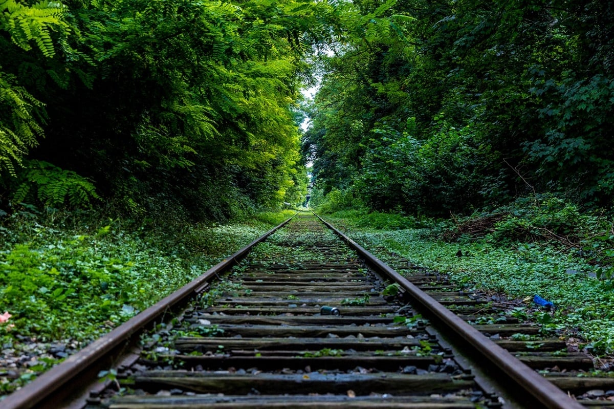 Federal Contractor Summertime Blues: 5 Steps to Staying on Track